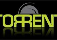 20313764301-torrent